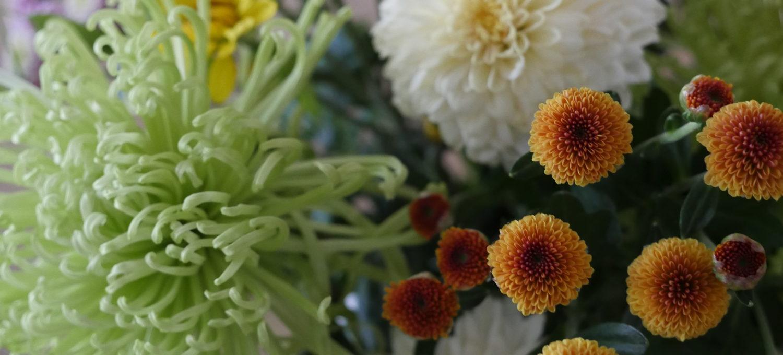 菊の生け花